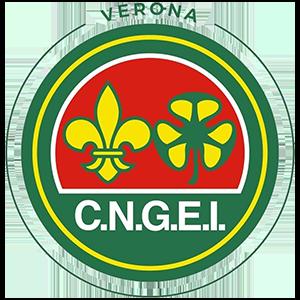 logo-cngei